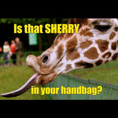Giraffe-Sherry
