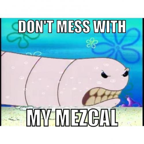 Mezcal worm